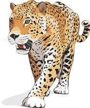 SCHOOL ICON - Jaguar.jpg